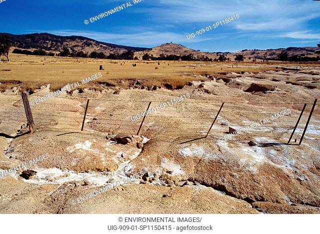 AUSTRALIA. Western Australia, vicinity Perth. Enormous amounts of salt lie in Australias inland soils. . When forest are cleared and land turned into pasture or...