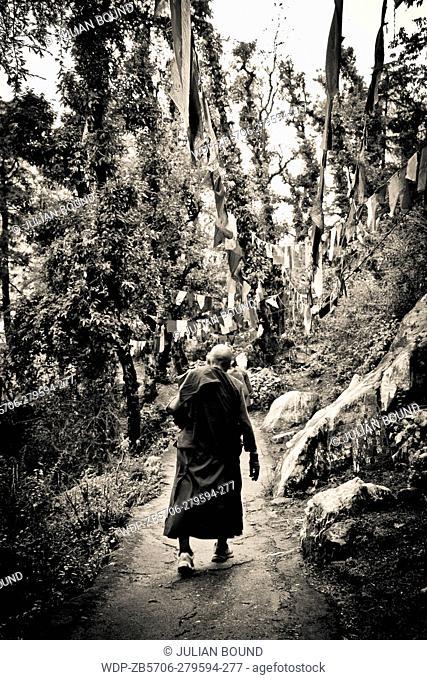 The Tibetan Buddhist nun on the Kora walk around the Dalai Lama temple, McLeod Ganj, India