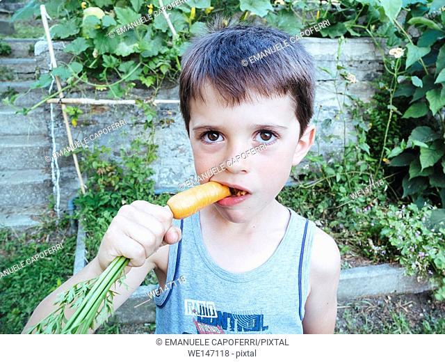 Child eating carrot