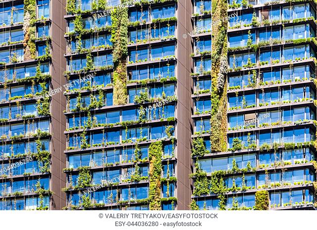 Vertical garden or living wall is a wall covered with living plants on residential building, Sydney Australia