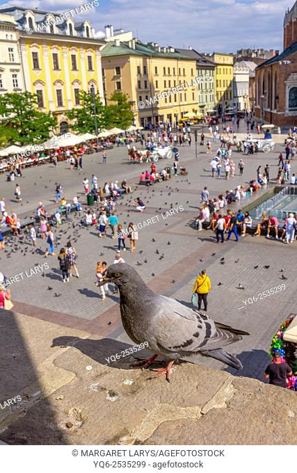 Tourists walking in the Old Market Square, view from above, Krakow, Poland
