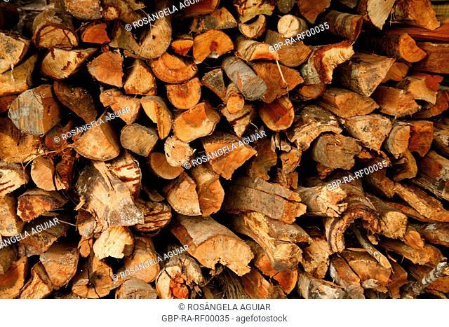 Wood, trunk, stacked, Belém, Pará, Brazil