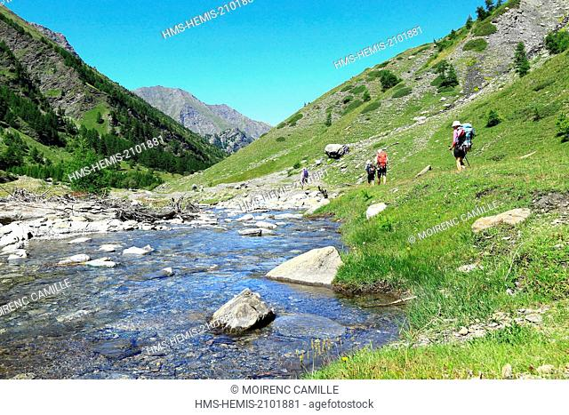 France, Hautes Alpes, regional park of Queyras, Ristolas, hike to the lookout Viso The Guil