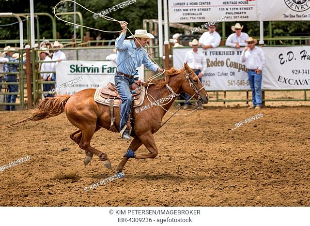 Calf Roping competition, Philomath Rodeo, Philomath, Oregon, USA