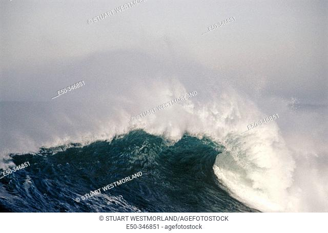 Wave breaks, winter storm. Cape Kiwanda, Oregon coast. USA
