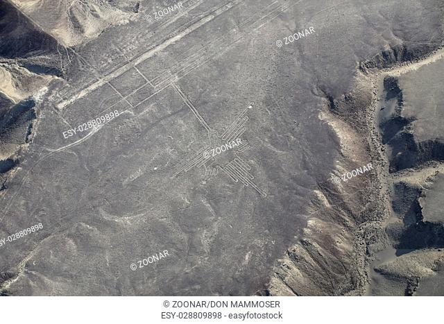 Aerial view of Nazca Lines - Hummingbird geoglyph, Peru