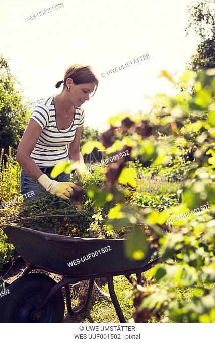 Mature woman gardening