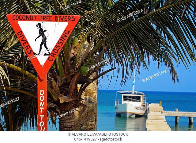 Beach, West End village, Roatan  Bay Islands  Caribbean  Honduras