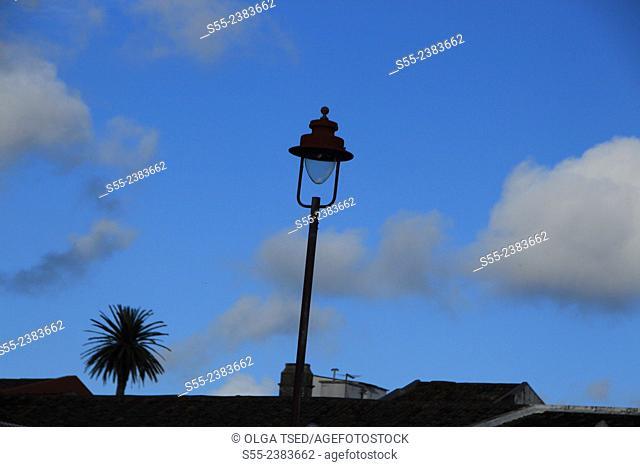 Street light and a palm tree, Ponta Delgada, Sao Miguel island, Azores, Portugal