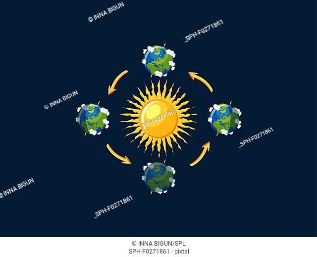 Earth seasons, illustration
