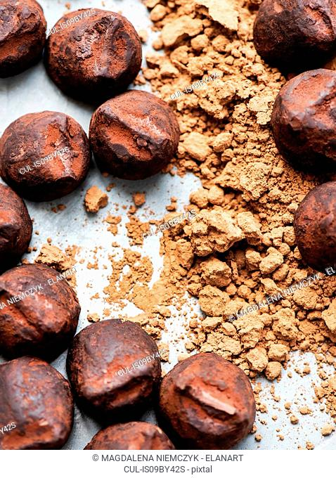 Chocolate truffles and cocoa powder