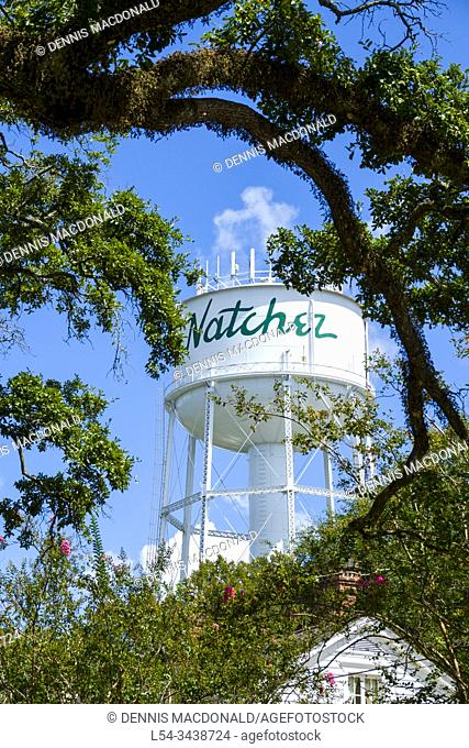 Natchez located at the southern end of the Natchez Trace is the oldest city on the Mississippi River and recipient of the prestigious federal designation as a...