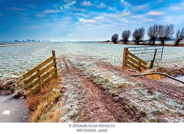 wooden fence on winter pasture