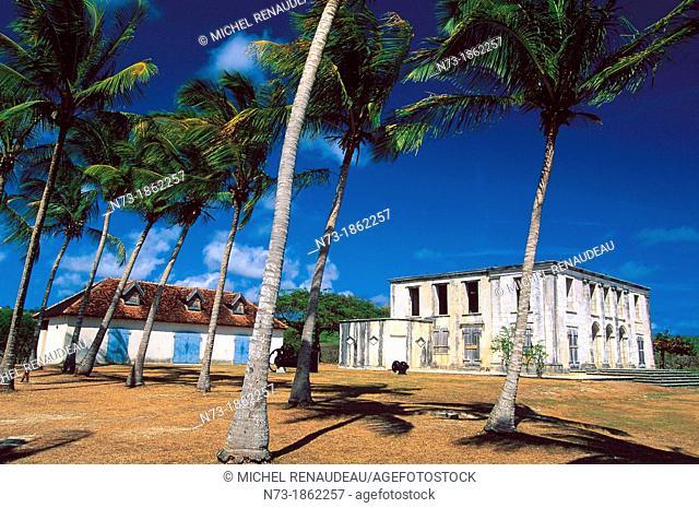 France, Antilles, Ile, Guadeloupe, Marie Galante