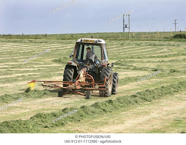 16 year old driving a tractor & raking up cut grass for cattle feed whilst on work experience, Dorset
