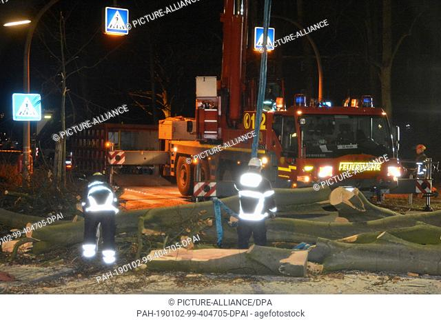 "02 January 2019, Hamburg: Firemen eliminate two fallen trees. They had to be lifted off the road with a crane. The storm low """"Zeetje"""" kept the emergency..."