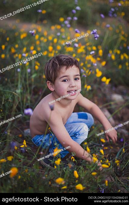 Young shirtless boy sitting on a field of yellow & purple wildflowers