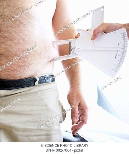 Body fat assessment