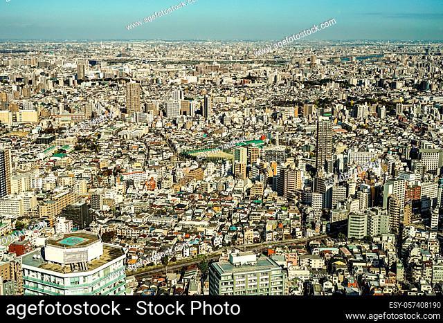 Tokyo skyline seen from the 60 observatory Sunshine. Shooting Location: Tokyo metropolitan area
