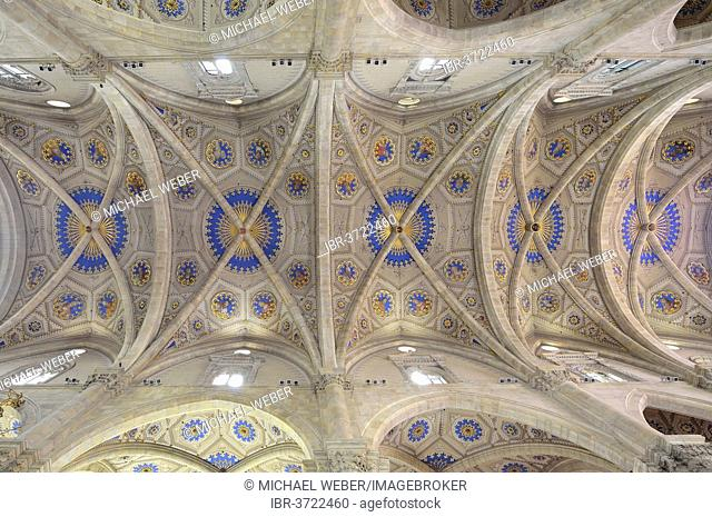 Interior, star vaults in the nave, Como Cathedral, Cathedral of Santa Maria Maggiore, Como, Lombardy, Italy