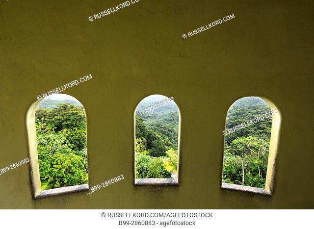 WINDOWS YOKAHU OBSERVATION TOWER EL YUNQUE NATIONAL FOREST RIO GRANDE PUERTO RICO