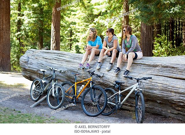 Three women mountain bikers sitting on tree trunk in forest