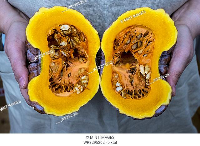 Close up of person holding pumpkin with orange flesh cut in half