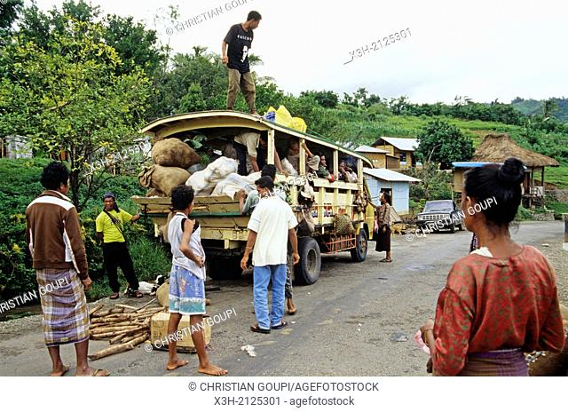 collective transport, Flores island, Lesser Sunda Islands, Republic of Indonesia, Southeast Asia and Oceania