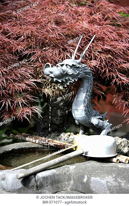 Japan, Tokyo: Shrine festival, called Matsuri. Asakusa Kannon Shrine Temple district