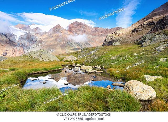 Alpine lake from National park Stelvio
