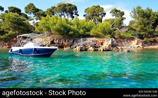 Landscape in the Sainte Marguerite island, Lerins islands, South of France