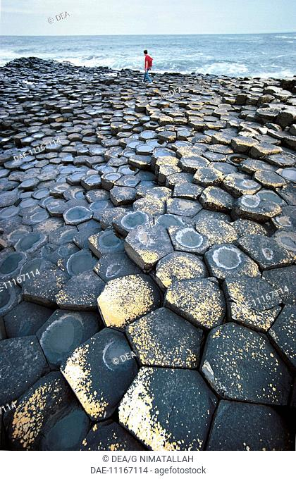 Northern Ireland - County Antrim - The Giant's Causeway (Giant's Causeway, UNESCO World Heritage List, 1986), prismatic columns of basalt
