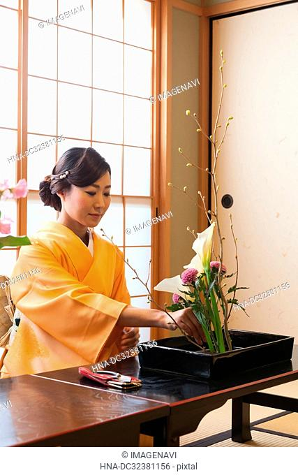 Japanese Culture Experiences in Kyoto, Japan
