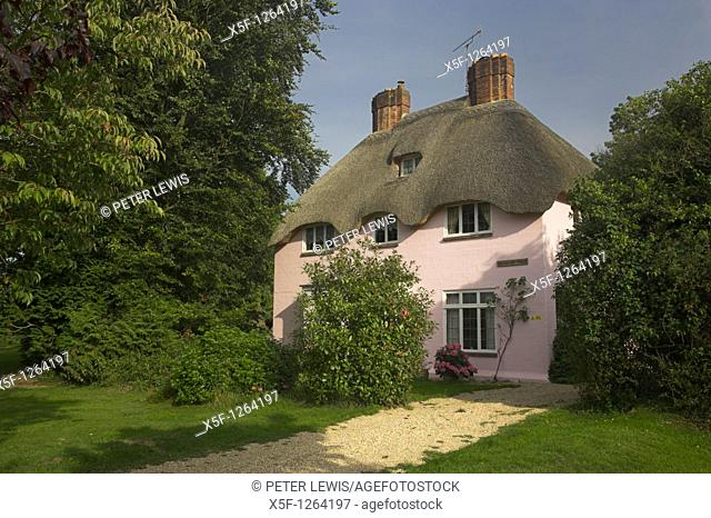 Pink Thatched Cottage of Brianstpuddle nr Dorchester noted for its Thatched Cottages Dorset