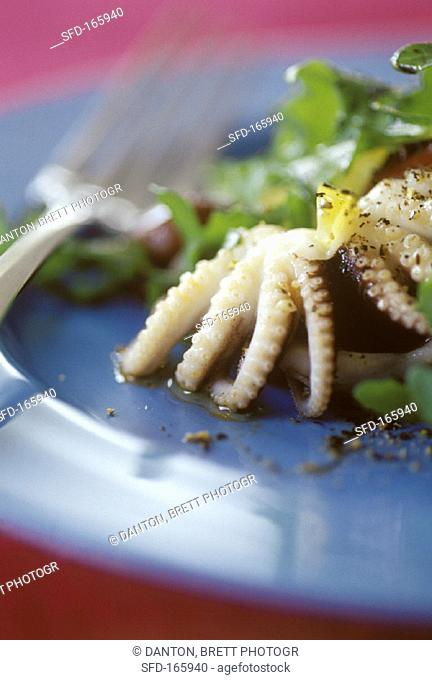 Green salad with cuttlefish