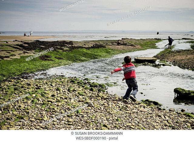 Great Britain, Scotland, Fife, Anstuther, boy throwing stones into water