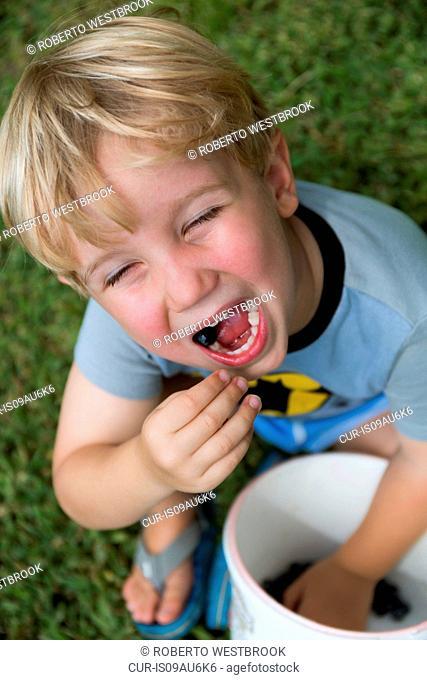 Boy eating blueberries from bucket on fruit farm