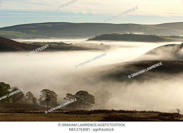 Misty valley landscape at sunrise near Llandrindod Wells, Powys, Wales, UK