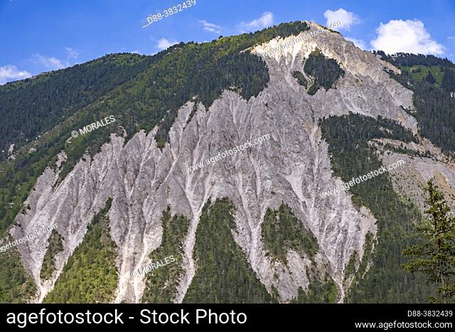 France, Auvergne-Rhône-Alpes Region, Savoie, Champagny-en-Vanoise, Alpine glade with erosion of the limestone soil that can eventually create scree on the steep...