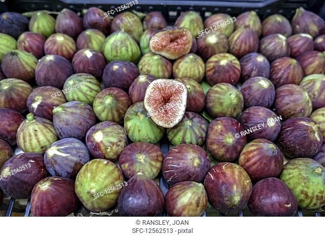 Fresh figs on display (Modena, Italy)