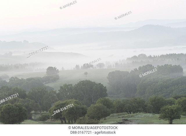 China, Inner Mongolia, Hebei Province, Zhangjiakou, Bashang Grassland, Colline landscape