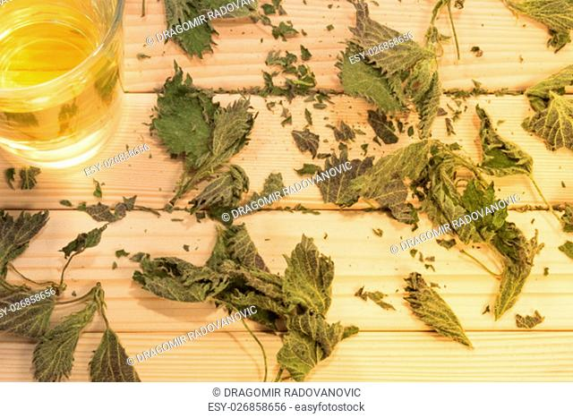 Glass of nettle tea. Table is covered with dry leaves