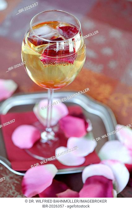 Glas of champagne with rose petals, rose prosecco