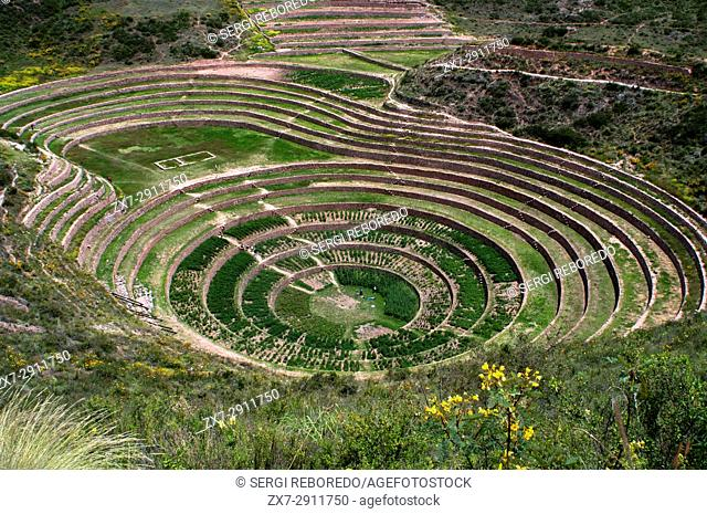 Archaeological site of Moray in the Sacred Valley near Cuzco. Moray - is the name of the Incan ruins near the town of Maras
