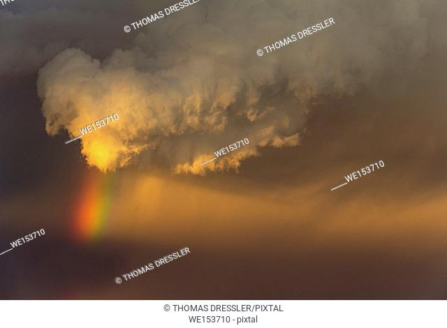 Evening thunderstorm with Cumulonimbus cloud and rainbow with tail. During the rainy season. Kalahari Desert, Kgalagadi Transfrontier Park, South Africa
