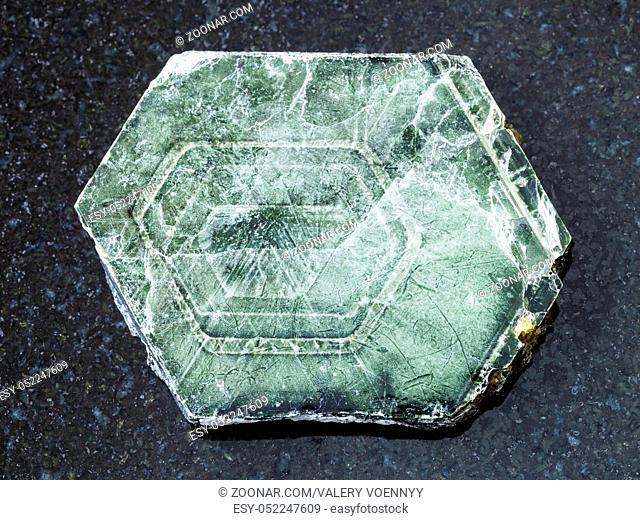 macro shooting of natural mineral rock specimen - raw Phlogopite stone on dark granite background from Kovdor region of Kola Peninsula in Russia