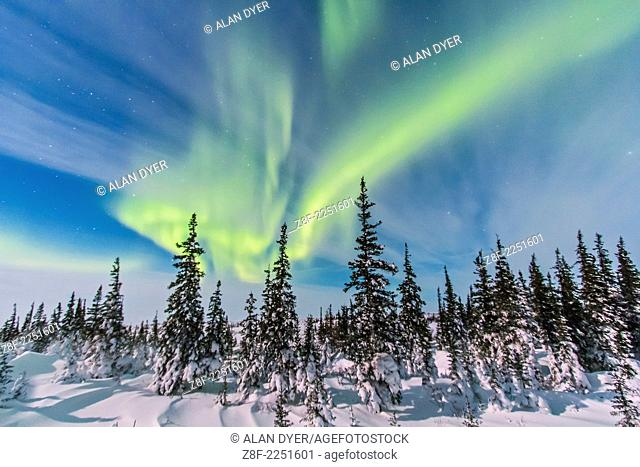 The aurora of February 9, 2014 seen from Churchill, Manitoba at the Churchill Northern Studies Centre, in a view looking northwest from the main building over...