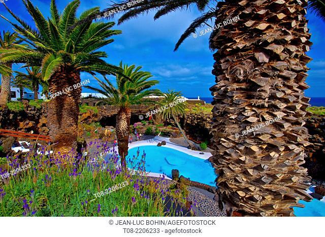 spain,canary islands,lanzarote : swimming pool and palm tree