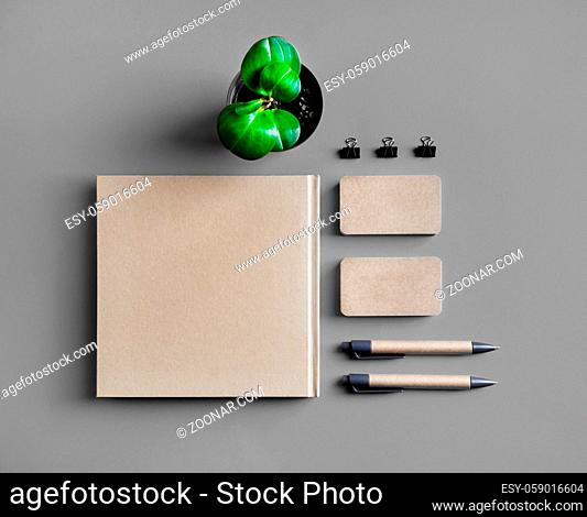 Kraft stationery mock up. Blank corporate identity set. Booklet, business cards, pens and plant. Template for branding identity. Flat lay