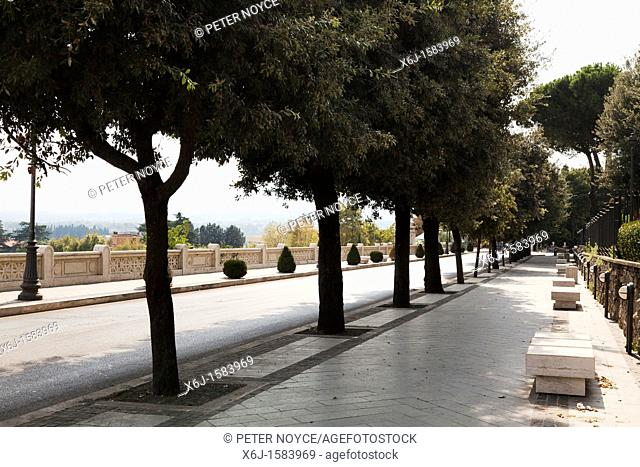 tree lined street in Palistrina with concrete benches